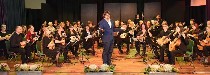 Festivalorkest